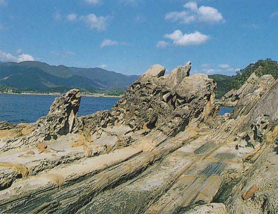 国指定 天然記念物  -高知県教育委員会文化財課-